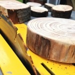 Table Saw Apple Wood
